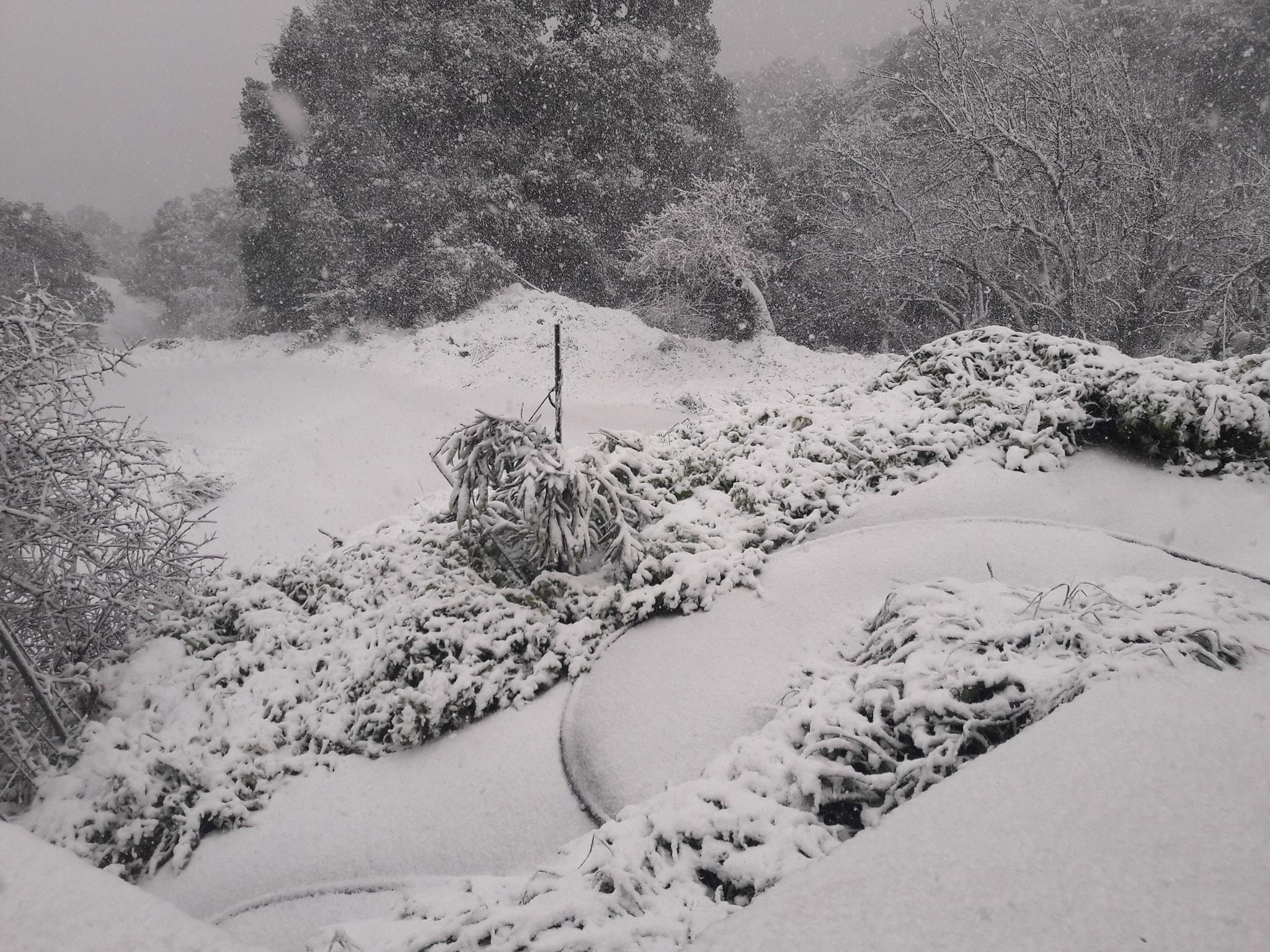 Αναγγελία ζημιάς από Ανεμοθύελλα & Χιονόπτωση στο Δήμο Πλατανιά